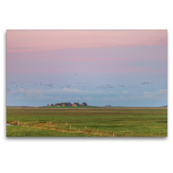 Premium Textil-Leinwand 120 x 80 cm Quer-Format Sonnenaufgang auf der Hallig Langeneß | Wandbild, HD-Bild auf Keilrahmen, Fertigbild auf hochwertigem Vlies, Leinwanddruck von Annett Mirsberger