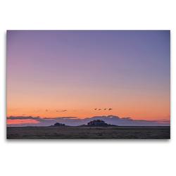 Premium Textil-Leinwand 120 x 80 cm Quer-Format Sonnenuntergang auf der Hallig Langeneß | Wandbild, HD-Bild auf Keilrahmen, Fertigbild auf hochwertigem Vlies, Leinwanddruck von Annett Mirsberger