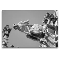 Premium Textil-Leinwand 120 x 80 cm Quer-Format Wasserspeier Stier auf dem Ulmer Münster | Wandbild, HD-Bild auf Keilrahmen, Fertigbild auf hochwertigem Vlies, Leinwanddruck von kattobello