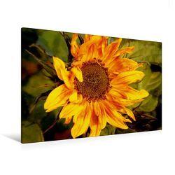Premium Textil-Leinwand 120 x 80 cm Quer-Format Wilde Sonnenblume   Wandbild, HD-Bild auf Keilrahmen, Fertigbild auf hochwertigem Vlies, Leinwanddruck von Heike Hultsch von Hultsch,  Heike