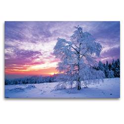 Premium Textil-Leinwand 120 x 80 cm Quer-Format Wintertraum im Schwarzwald | Wandbild, HD-Bild auf Keilrahmen, Fertigbild auf hochwertigem Vlies, Leinwanddruck von CALVENDO