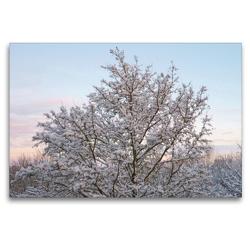 Premium Textil-Leinwand 120 x 80 cm Quer-Format Winterwald im Abendschein | Wandbild, HD-Bild auf Keilrahmen, Fertigbild auf hochwertigem Vlies, Leinwanddruck von kattobello