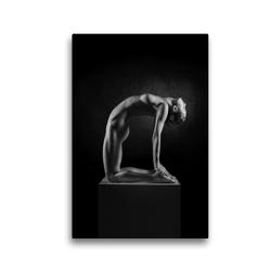 Premium Textil-Leinwand 30 x 45 cm Hoch-Format BODY SCULPTURE   Wandbild, HD-Bild auf Keilrahmen, Fertigbild auf hochwertigem Vlies, Leinwanddruck von Hans Jörg Leth