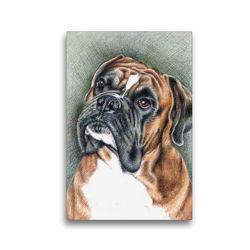 Premium Textil-Leinwand 30 x 45 cm Hoch-Format Der Boxer | Wandbild, HD-Bild auf Keilrahmen, Fertigbild auf hochwertigem Vlies, Leinwanddruck von Nicole Zeug