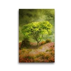 Premium Textil-Leinwand 30 x 45 cm Hoch-Format Der Wunschbaum | Wandbild, HD-Bild auf Keilrahmen, Fertigbild auf hochwertigem Vlies, Leinwanddruck von Martina Kröger