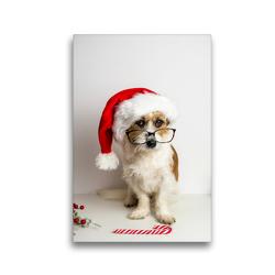 Premium Textil-Leinwand 30 x 45 cm Hoch-Format Hund mit Weihnachtsmütze | Wandbild, HD-Bild auf Keilrahmen, Fertigbild auf hochwertigem Vlies, Leinwanddruck von Sonja Rachbauer