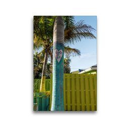 Premium Textil-Leinwand 30 x 45 cm Hoch-Format Matlacha – farbenfrohe Insel in Südwest-Florida | Wandbild, HD-Bild auf Keilrahmen, Fertigbild auf hochwertigem Vlies, Leinwanddruck von Mario Hagen