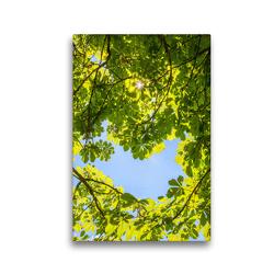 Premium Textil-Leinwand 30 x 45 cm Hoch-Format Schöne Bäume in Hochformat | Wandbild, HD-Bild auf Keilrahmen, Fertigbild auf hochwertigem Vlies, Leinwanddruck von Christa Kramer
