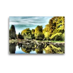 Premium Textil-Leinwand 45 x 30 cm Quer-Format Baumstämme | Wandbild, HD-Bild auf Keilrahmen, Fertigbild auf hochwertigem Vlies, Leinwanddruck von Garrulus glandarius