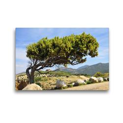 Premium Textil-Leinwand 45 x 30 cm Quer-Format Bei Galeria, Korsika | Wandbild, HD-Bild auf Keilrahmen, Fertigbild auf hochwertigem Vlies, Leinwanddruck von Reinhold Ratzer