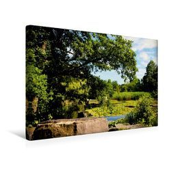 Premium Textil-Leinwand 45 x 30 cm Quer-Format Botanischer Garten | Wandbild, HD-Bild auf Keilrahmen, Fertigbild auf hochwertigem Vlies, Leinwanddruck von Helene Seidl von Seidl,  Helene