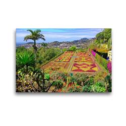 Premium Textil-Leinwand 45 x 30 cm Quer-Format Botanischer Garten   Wandbild, HD-Bild auf Keilrahmen, Fertigbild auf hochwertigem Vlies, Leinwanddruck von Klaus Lielischkies