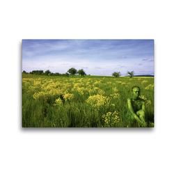 Premium Textil-Leinwand 45 x 30 cm Quer-Format Brachfläche bei Gasterfeld   Wandbild, HD-Bild auf Keilrahmen, Fertigbild auf hochwertigem Vlies, Leinwanddruck von Gunter Best