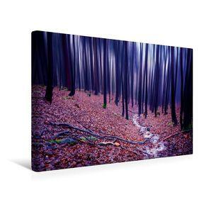 Premium Textil-Leinwand 45 x 30 cm Quer-Format Buchenwald im Herbst   Wandbild, HD-Bild auf Keilrahmen, Fertigbild auf hochwertigem Vlies, Leinwanddruck von Val Thoermer von Thoermer,  Val