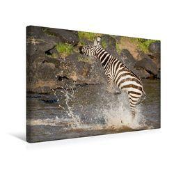 Premium Textil-Leinwand 45 x 30 cm Quer-Format Das Zebra rettet sich nach einer Krokodilattacke | Wandbild, HD-Bild auf Keilrahmen, Fertigbild auf hochwertigem Vlies, Leinwanddruck von Ingo Gerlach