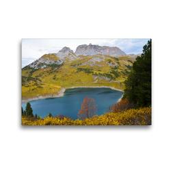 Premium Textil-Leinwand 45 x 30 cm Quer-Format Der Baum in seiner schönsten Form   Wandbild, HD-Bild auf Keilrahmen, Fertigbild auf hochwertigem Vlies, Leinwanddruck von N N