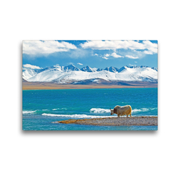 Premium Textil-Leinwand 45 x 30 cm Quer-Format Ein einsames Yak steht am idyllischen Nam Co See vor schneebedeckter Gebirgskette | Wandbild, HD-Bild auf Keilrahmen, Fertigbild auf hochwertigem Vlies, Leinwanddruck von CALVENDO