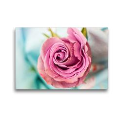 Premium Textil-Leinwand 45 x 30 cm Quer-Format Eine bezaubernde Rose   Wandbild, HD-Bild auf Keilrahmen, Fertigbild auf hochwertigem Vlies, Leinwanddruck von Rose Hurley