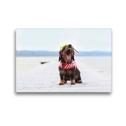 Premium Textil-Leinwand 45 x 30 cm Quer-Format Elly leitet den Sommer ein | Wandbild, HD-Bild auf Keilrahmen, Fertigbild auf hochwertigem Vlies, Leinwanddruck von Anja Foto Grafia Fotografie