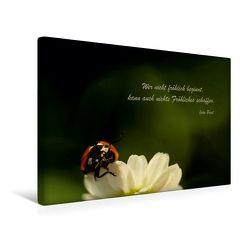 Premium Textil-Leinwand 45 x 30 cm Quer-Format Fröhliches Beginnen | Wandbild, HD-Bild auf Keilrahmen, Fertigbild auf hochwertigem Vlies, Leinwanddruck von Heike Hultsch