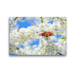Premium Textil-Leinwand 45 x 30 cm Quer-Format Frühlingsgefühle | Wandbild, HD-Bild auf Keilrahmen, Fertigbild auf hochwertigem Vlies, Leinwanddruck von GUGIGEI
