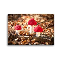 Premium Textil-Leinwand 45 x 30 cm Quer-Format Gehäkelte Fliegenpilze im Wald | Wandbild, HD-Bild auf Keilrahmen, Fertigbild auf hochwertigem Vlies, Leinwanddruck von Wiebke Storm