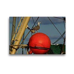 Premium Textil-Leinwand 45 x 30 cm Quer-Format Hafenbewohner   Wandbild, HD-Bild auf Keilrahmen, Fertigbild auf hochwertigem Vlies, Leinwanddruck von Norbert J. Sülzner / NJS-Photographie