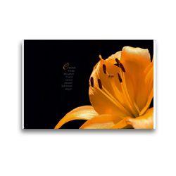 Premium Textil-Leinwand 45 x 30 cm Quer-Format i wie Inspiration – Gedanken und Fotografien   Wandbild, HD-Bild auf Keilrahmen, Fertigbild auf hochwertigem Vlies, Leinwanddruck von Martina Marten