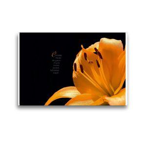 Premium Textil-Leinwand 45 x 30 cm Quer-Format i wie Inspiration – Gedanken und Fotografien | Wandbild, HD-Bild auf Keilrahmen, Fertigbild auf hochwertigem Vlies, Leinwanddruck von Martina Marten