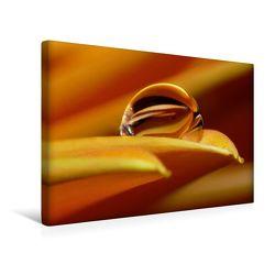 Premium Textil-Leinwand 45 x 30 cm Quer-Format Kalender   Wandbild, HD-Bild auf Keilrahmen, Fertigbild auf hochwertigem Vlies, Leinwanddruck von Gabi Siebenhühner