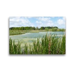 Premium Textil-Leinwand 45 x 30 cm Quer-Format Kleiner See in Südholland | Wandbild, HD-Bild auf Keilrahmen, Fertigbild auf hochwertigem Vlies, Leinwanddruck von Susanne Herppich