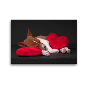 Premium Textil-Leinwand 45 x 30 cm Quer-Format Müde bin ich, geh' zur Ruh' | Wandbild, HD-Bild auf Keilrahmen, Fertigbild auf hochwertigem Vlies, Leinwanddruck von Angelika Joswig