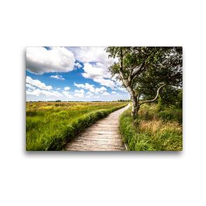 Premium Textil-Leinwand 45 x 30 cm Quer-Format Naturlehrpfad-Blick   Wandbild, HD-Bild auf Keilrahmen, Fertigbild auf hochwertigem Vlies, Leinwanddruck von A. Dreegmeyer