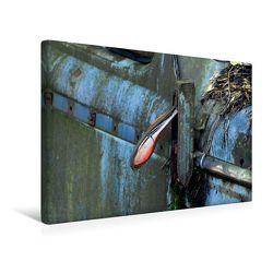 Premium Textil-Leinwand 45 x 30 cm Quer-Format ROSTLAUBEN Die schönsten Autowracks   Wandbild, HD-Bild auf Keilrahmen, Fertigbild auf hochwertigem Vlies, Leinwanddruck von Ingo Laue von Laue,  Ingo