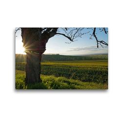 Premium Textil-Leinwand 45 x 30 cm Quer-Format Rund um´s Kloster Donndorf (Thüringen) | Wandbild, HD-Bild auf Keilrahmen, Fertigbild auf hochwertigem Vlies, Leinwanddruck von Flori0