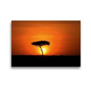 Premium Textil-Leinwand 45 x 30 cm Quer-Format Schirmakazie bei Sonnenaufgang | Wandbild, HD-Bild auf Keilrahmen, Fertigbild auf hochwertigem Vlies, Leinwanddruck von Michael Herzog