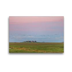 Premium Textil-Leinwand 45 x 30 cm Quer-Format Sonnenaufgang auf der Hallig Langeneß | Wandbild, HD-Bild auf Keilrahmen, Fertigbild auf hochwertigem Vlies, Leinwanddruck von Annett Mirsberger