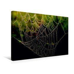 Premium Textil-Leinwand 45 x 30 cm Quer-Format Spinnennetz im Morgentau | Wandbild, HD-Bild auf Keilrahmen, Fertigbild auf hochwertigem Vlies, Leinwanddruck von Heike Hultsch von Hultsch,  Heike