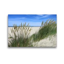 Premium Textil-Leinwand 45 x 30 cm Quer-Format Strandhafer im Sommer | Wandbild, HD-Bild auf Keilrahmen, Fertigbild auf hochwertigem Vlies, Leinwanddruck von Susanne Herppich