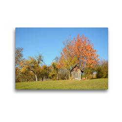 Premium Textil-Leinwand 45 x 30 cm Quer-Format Streuobstwiesen | Wandbild, HD-Bild auf Keilrahmen, Fertigbild auf hochwertigem Vlies, Leinwanddruck von GUGIGEI