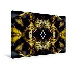 Premium Textil-Leinwand 45 x 30 cm Quer-Format Touho | Wandbild, HD-Bild auf Keilrahmen, Fertigbild auf hochwertigem Vlies, Leinwanddruck von NUPHO Nihat Uysal Photography