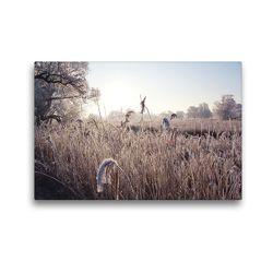 Premium Textil-Leinwand 45 x 30 cm Quer-Format Winterstimmung an der Schilfkante der Havel. Landschaft im Havelland. | Wandbild, HD-Bild auf Keilrahmen, Fertigbild auf hochwertigem Vlies, Leinwanddruck von Anja Frost
