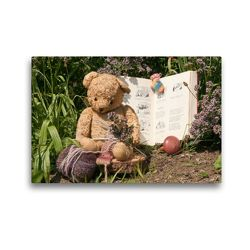 Premium Textil-Leinwand 45 x 30 cm Quer-Format Wollbär | Wandbild, HD-Bild auf Keilrahmen, Fertigbild auf hochwertigem Vlies, Leinwanddruck von Meike Bölts