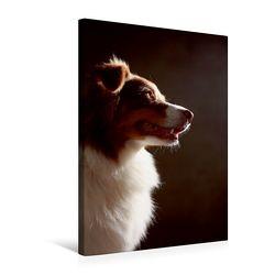 Premium Textil-Leinwand 50 x 75 cm Hoch-Format Bones, 3 Jahre | Wandbild, HD-Bild auf Keilrahmen, Fertigbild auf hochwertigem Vlies, Leinwanddruck von Jana Behr