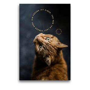 Premium Textil-Leinwand 50 x 75 cm Hoch-Format Ein Freund   Wandbild, HD-Bild auf Keilrahmen, Fertigbild auf hochwertigem Vlies, Leinwanddruck von Susan Michel