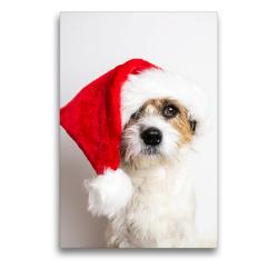 Premium Textil-Leinwand 50 x 75 cm Hoch-Format Hund mit Weihnachtsmütze | Wandbild, HD-Bild auf Keilrahmen, Fertigbild auf hochwertigem Vlies, Leinwanddruck von Sonja Rachbauer