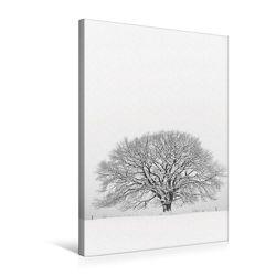 Premium Textil-Leinwand 50 x 75 cm Hoch-Format Januar: Der Winter hält die Natur fest im Griff. | Wandbild, HD-Bild auf Keilrahmen, Fertigbild auf hochwertigem Vlies, Leinwanddruck von Ingo Gerlach GDT