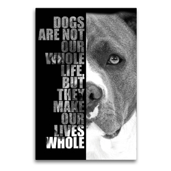Premium Textil-Leinwand 60 x 90 cm Hoch-Format American Staffordshire Terrier | Wandbild, HD-Bild auf Keilrahmen, Fertigbild auf hochwertigem Vlies, Leinwanddruck von Wilsigns.com – Nicole Hahn