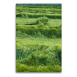 Premium Textil-Leinwand 60 x 90 cm Hoch-Format Auf dem Felde | Wandbild, HD-Bild auf Keilrahmen, Fertigbild auf hochwertigem Vlies, Leinwanddruck von Flori0