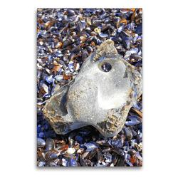 Premium Textil-Leinwand 60 x 90 cm Hoch-Format Hühnergott Glücksbringer auf Muscheln | Wandbild, HD-Bild auf Keilrahmen, Fertigbild auf hochwertigem Vlies, Leinwanddruck von Michaela Schimmack